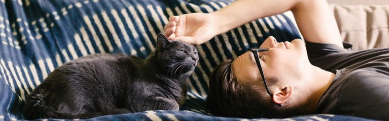 How Behaviorists Can Help You Bond with Your Cat